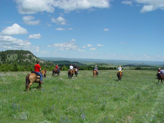 horseback_riding_montana7