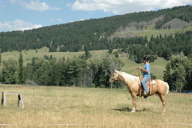 horsemanship_clinics