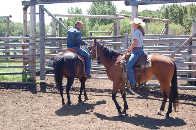 horsemanship_clinics7