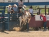 Montana_rodeo