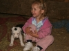 Sweet_Grass_Ranch_kids_dogs