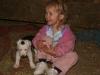 Sweet_Grass_Ranch_kids_dogs