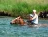 Sweet_Grass_Ranch_swimming