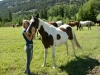 montana_horses_kids