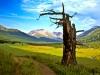 sweet-grass-ranch_35