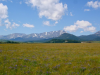 sweet_grass_ranch_6