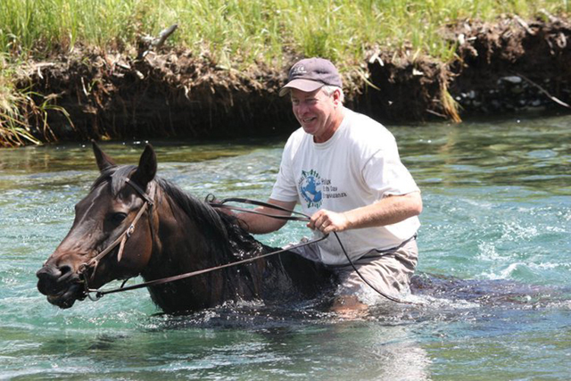 swimming_with_horses