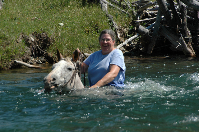 Swimming with Horses « Sweet Grass Ranch