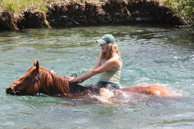 swimming_with_horses3