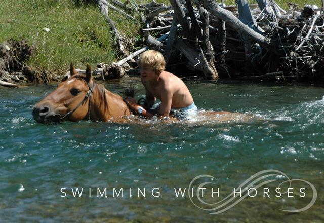swimminghorses